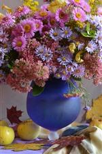 Aperçu iPhone fond d'écranFleurs aster, rose et violet, vase, pommes, feuilles d'érable