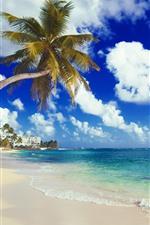 iPhone обои Пляж, море, побережье, пальмы, дома, тропические, облака