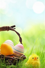 Preview iPhone wallpaper Colorful Easter eggs, basket, green grass, chicks