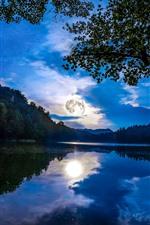 iPhone обои Германия, Майнц, Деревья, Луна, Озеро, Отражение воды