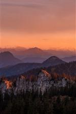 Vorschau des iPhone Hintergrundbilder Berge, Wald, Bäume, Dämmerung, Herbst