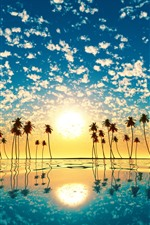 Preview iPhone wallpaper Palm trees, silhouette, sea, water reflection, clouds, tropical