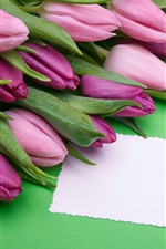 Preview iPhone wallpaper Purple tulips, bow, green background