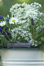 Preview iPhone wallpaper Summer flowers, bucket