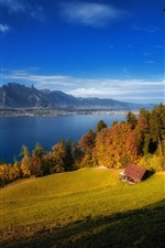 Preview iPhone wallpaper Switzerland, Lake Thun, trees, house, autumn