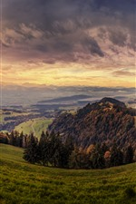 Preview iPhone wallpaper Switzerland, mountains, slope, grass, trees, path, autumn