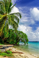 Preview iPhone wallpaper Tropical, beach, palm trees, boat, sea, white clouds