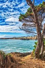 iPhone обои США, море, деревья, трава, голубое небо, облака
