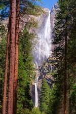 Preview iPhone wallpaper Yosemite National Park, waterfalls, trees, USA