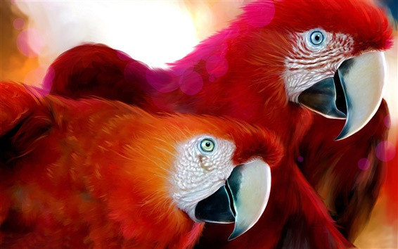 Wallpaper A pair of red parrot
