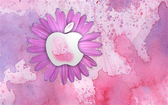 Обои Apple розовые цветы