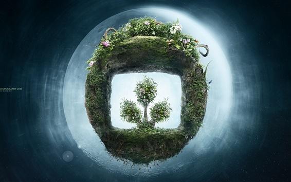 壁紙 緑色植物の新生