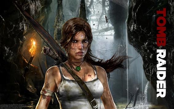 Обои 2011 Tomb Raider 9