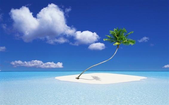 Papéis de Parede Uma ilha coqueiro