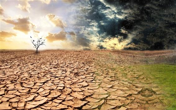 Wallpaper Dry land
