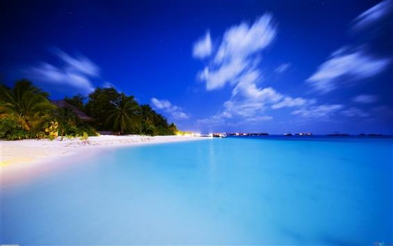 Wallpaper Neotropical summer beach