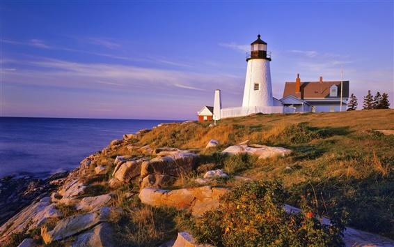 Wallpaper Pemaquid Lighthouse and Cliffs