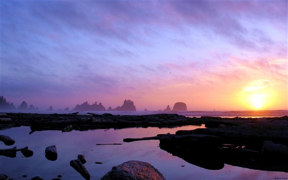 Wallpaper Washington coast at dusk