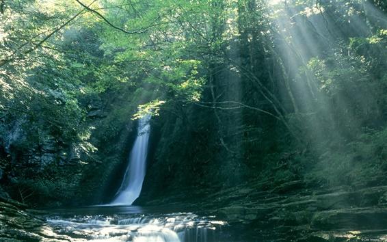 Wallpaper Waterfall in Japan