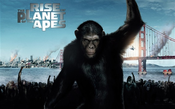 Fond d'écran 2011 Rise of the Planet of the Apes