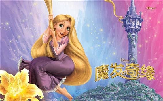 壁紙 美しい長い髪のプリンセス