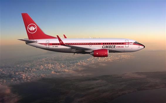 Wallpaper Boeing 737 flight in sky