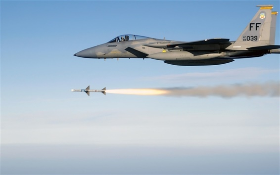 Wallpaper Mcdonnell Douglas F-15 Eagle
