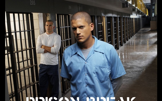 Wallpaper Prison Break