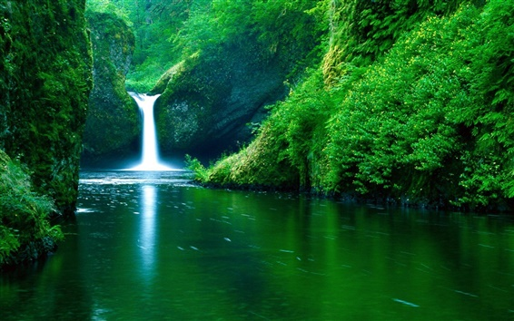 Wallpaper Waterfall river green