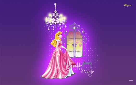 Wallpaper Well-dressed princess