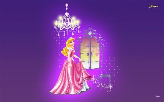 Fond d'écran Eh bien habillé princesse