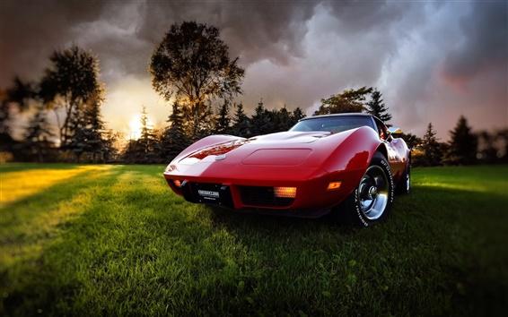 Wallpaper Corvette auto red