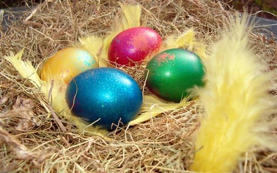 Fond d'écran Quatre couleurs des oeufs de Pâques