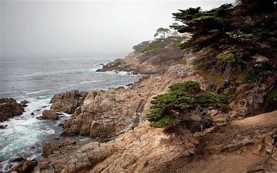 Wallpaper Sea nature landscape rocks