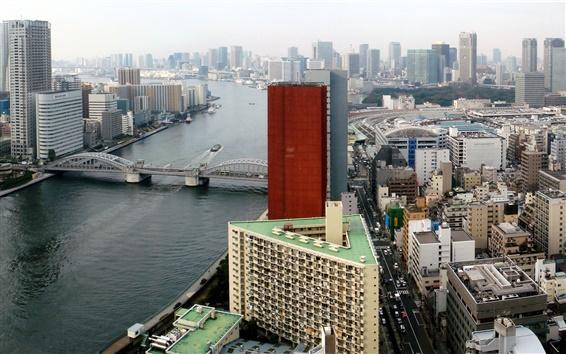 배경 화면 스미다 강 일본 도쿄