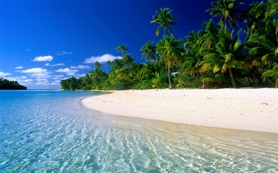 Wallpaper Beautiful dream beach