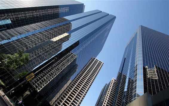 Wallpaper City skyscrapers window glass