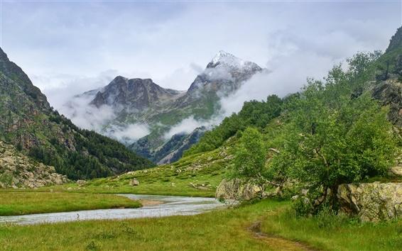 壁紙 山雲の木と小川