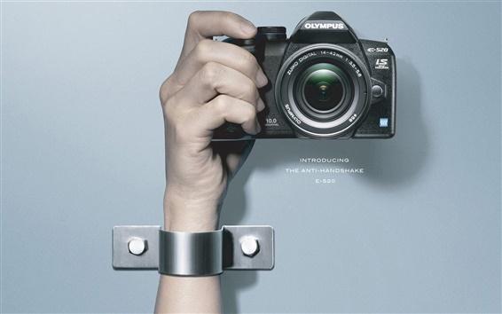 Обои Olympus цифровых камер