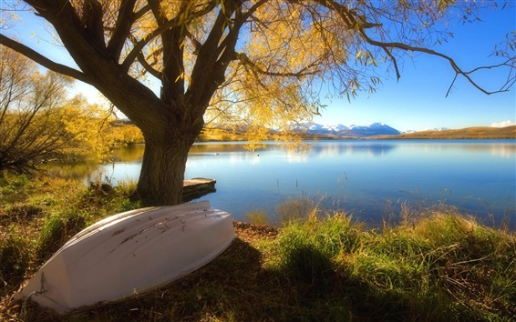 Wallpaper Autumn beautiful of the lake