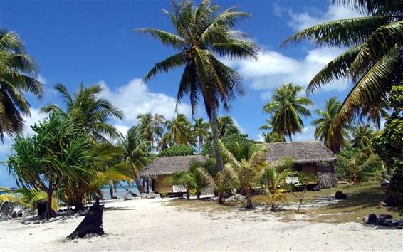 Fond d'écran Plage Coconut Grove maison pour le loisir