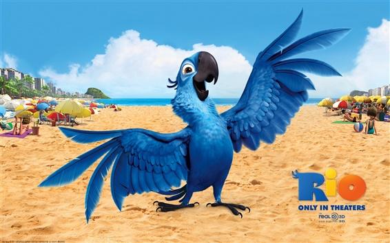 Обои Синий в Рио