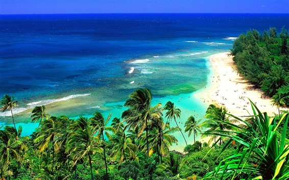 Обои Угол пляже на Гавайях