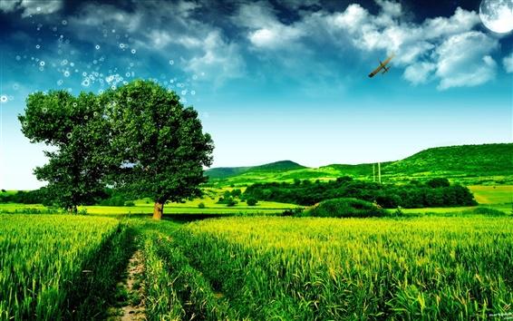 배경 화면 꿈 녹색 풍경