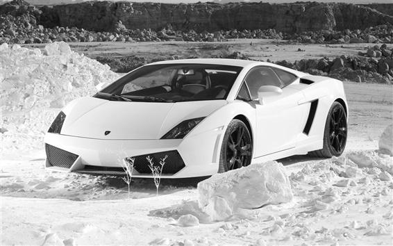 배경 화면 람보르기니 흰색 자동차