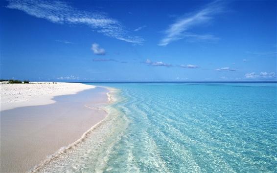 Papéis de Parede Verão azul praia onda