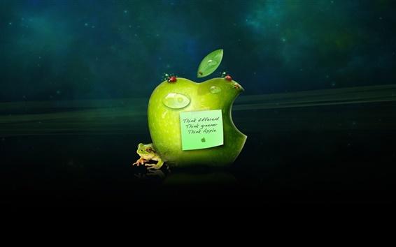Обои Думайте иначе, зеленее Думайте, думайте компании Apple
