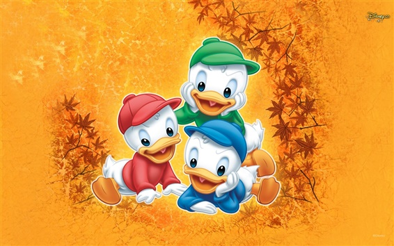 Wallpaper Three brothers duckling