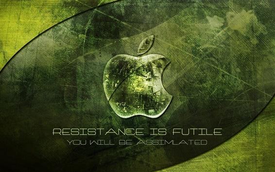 Обои Яблоко зеленом фоне