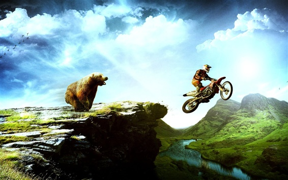 Wallpaper Bear and the motorcycle chase